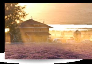 Farm Utah