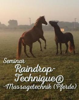 Seminar Raindrop-Technique®-Massagetechnik (Pferde)